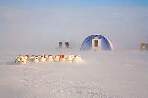 Gas cylinders in blowing snow during a storm, with tent behind. Patriot Hills, Antarctica, January 2006.  -  Bryan and Cherry Alexander