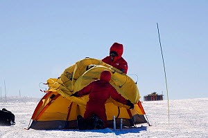 People putting up a mountain tent in a high wind. Patriot Hills, Antarctica, January 2006.  -  Bryan and Cherry Alexander