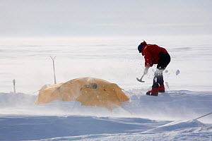 Shovelling snow from mountain tent in the wind. Patriot Hills. Antarctica, January 2006.  -  Bryan and Cherry Alexander