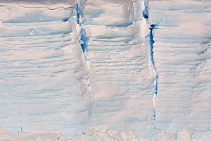 Crevasses in the side of a tabular icebergs, with the annual layers visible. Antarctica, October 2006.  -  Bryan and Cherry Alexander
