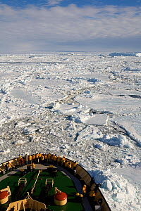 """Yellow jacketed tourist on the bow of the """"Kapitan Khlebnikov"""" venturing through pack ice in Erebus & Terror Gulf. Antarctica, October 2006.  -  Bryan and Cherry Alexander"""
