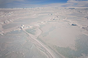 Refrozen crack and small pressure ridges in the sea ice in Erebus and Terror Gulf, Antarctica, October 2006.  -  Bryan and Cherry Alexander