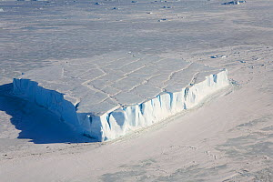 Tabular iceberg patterned with old crevasses. Snow Hill Island, Antarctica, October 2006.  -  Bryan and Cherry Alexander