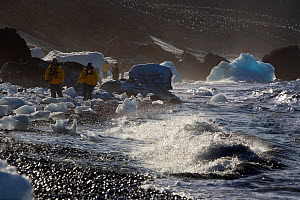 Tourists walking amongst ice blocks in the surf on Brown Bluff Beach, Southern Ocean, Antarctica, October 2006.  -  Bryan and Cherry Alexander