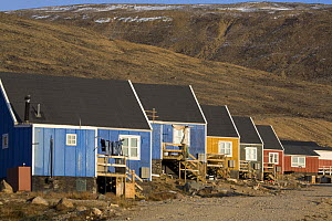 Brightly coloured Inuit homes in the community of Qaanaaq, Northwest Greenland, September 2008.  -  Bryan and Cherry Alexander