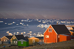 Houses in the Inuit community of Qaanaaq, on the shore of Inglefield Bay in autumn. Northwest Greenland, September 2008.  -  Bryan and Cherry Alexander