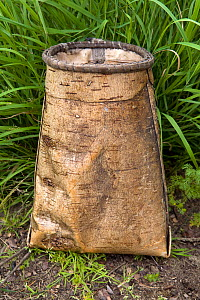 Birch bark container used by the Selkup to collect berries. Purovsky Region, Yamal, Western Siberia, Russia, August 2008. - Bryan and Cherry Alexander