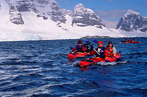 Eco tourists in double kayaks paddling near Port Lockroy, Antarctic Peninsula. Editorial use only.  -  Bryan and Cherry Alexander
