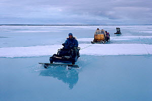 Inuit hunters travelling by snowmobile across wet sea ice during the summer thaw. Igloolik, Nunavut, Canada, 1992. - Bryan and Cherry Alexander
