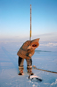 Inuit hunter using ice chisel to make hole in sea ice for fishing. Igloolik, Nunavut, Canada, 1993. - Bryan and Cherry Alexander