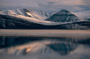 Mountains and altocumulus clouds reflected in Hall Basin. Ellesmere Island, Nunavut, Canada. - Bryan and Cherry Alexander