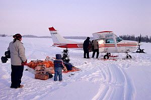 Cree family watching supplies arrive in small plane on the lake ice. Quebec, Canada, 1988.  -  Bryan and Cherry Alexander