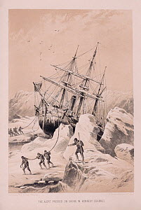Boat nearing shore in Kennedy Channel during the Great English Expedition 1875-1876.  -  Bryan and Cherry Alexander