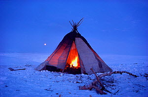 Sami tent / lavvu made from birch poles and blankets with a fire burning inside. North Norway, 1985.  -  Bryan and Cherry Alexander