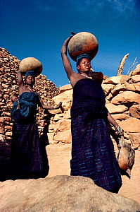 Dogon women fetching water in earthenware jars, each holding 25 litres. Mali, West Africa, 1981. - Bryan and Cherry Alexander