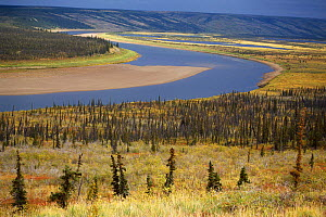 View of Anderson River as it runs through tundra east of Inuvik. North West Territories, Canada, 1996.  -  Bryan and Cherry Alexander