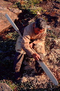 Inuk making unfeathered kayak paddle from plank. Qeqertat, Northwest Greenland, 1980. - Bryan and Cherry Alexander