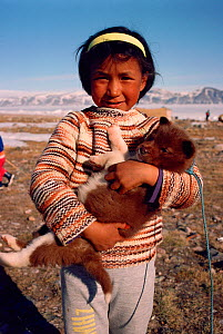 Young Inuit girl from Siorapluk holding Husky dog (Canis familiaris) puppy, Northwest Greenland, 1989.  -  Bryan and Cherry Alexander