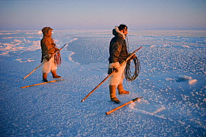 Inuit hunters waiting on thin sea ice for Walrus. Siorapaluk, Northwest Greenland, 1977  -  Bryan and Cherry Alexander