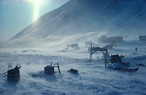 Storm blowing snow around sleds and houses in Inuit village of Siorapaluk. Thule, Northwest Greenland, 1977. - Bryan and Cherry Alexander