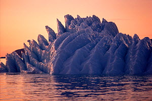 Recently rolled iceberg showing ridges formed beneath surface. Northwest Greenland, 1991. - Bryan and Cherry Alexander