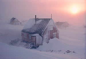 Severe winter storm hitting Inuit community of Savissivik, Northwest Greenland, 1998. - Bryan and Cherry Alexander