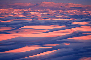 Sastrugi, wind carved patterns in the snow, on snow covered winter tundra at sunset. Chukotskiy Peninsula, Chukotka, Siberia, Russia.  -  Bryan and Cherry Alexander