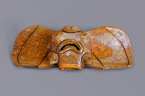 Harpoon stabiliser carved from Walrus ivory (circa 1000 BC - 1000 AD) Bering Strait, Chukotka, Siberia, Russia.  -  Bryan and Cherry Alexander