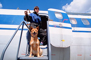 Dog handler with domestic dog / Jackal cross, trained to detect explosives at Sheremetyevo Airport, Moscow, Russia, 2005. - Bryan and Cherry Alexander