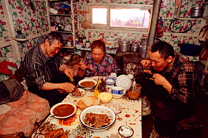 Dolgan family of reindeer / caribou herders having meal together inside their balok (moveable hut built on sled runners). Taymyr, Northern Siberia, Russia, 2004. - Bryan and Cherry Alexander