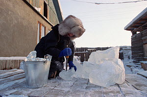 Girl breaking up pieces of river ice for drinking water. Verkhoyansk, Yakutia, Siberia, Russia, 1999. - Bryan and Cherry Alexander