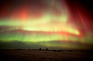 Northern lights (Aurora borealis) over a Nenets herders' camp. Yamal Peninsula, Western Siberia, Russia, 2001 - Bryan and Cherry Alexander