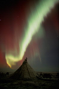 Northern lights (Aurora borealis) over a Nenets herders' camp. Yamal Peninsula, Western Siberia, Russia, 2001. - Bryan and Cherry Alexander
