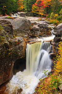 Bear River and Screw Auger Falls, in autumn / fall, Grafton Notch State Park, Maine, USA. October 2009 - Jerry Monkman