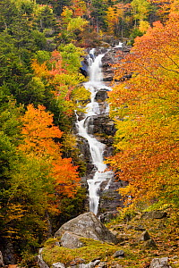Silver Cascade waterfall in autumn / fall. White Mountains, Crawford Notch State Park, New Hampshire, USA. October 2009 - Jerry Monkman