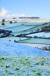 Frozen, snow-dusted pastureland, arable fields, farmhouses and row of trees on Frozen Hill, near Bath, Somerset, UK, winter. December 2009  -  Nick Upton