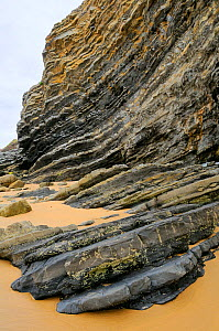 Folded layers of Jurassic sedimentary limestone and marl rocks in the cliffs at Vega beach, Ribadesella, Asturias, Spain. July 2009  -  Nick Upton