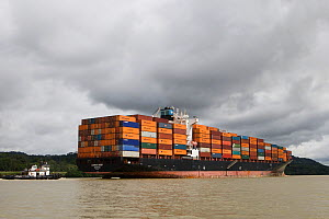 Container freighter travelling through the Panama canal, Panama, November 2008  -  Piper Mackay