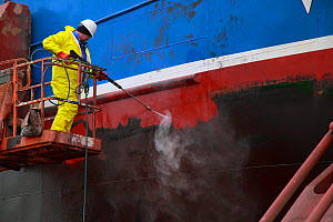 Algae being pressure washed from a fishing vessel's hull in dry dock, Skagen, Denmark. March 2010. - Philip Stephen