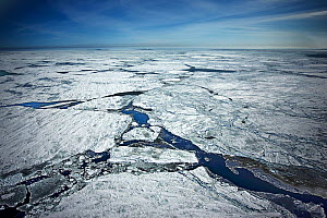 Aerial view of the pack / sea ice, breaking up and melting. Iles de la Madeleine, Magdalen Island, St. Lawrence, Canadian Arctic. March 2008.  -  Uri Golman