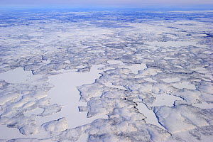 Aerial view of Mackenzie river and delta in winter, North West Territories, Canada April 2010  -  Eric Baccega