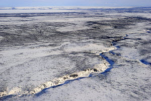 Aerial view of Mackenzie delta in winter, North West Territories, Canada April 2010  -  Eric Baccega