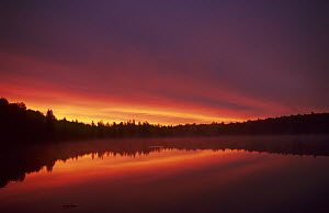 Sunrise on Lake Alphonse. Mauricie National Park, Quebec, Canada, September 2001  -  Eric Baccega
