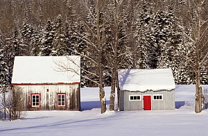 Two typical wooden huts in forest in winter, Tewkesbury, Quebec, Canada, December 2001  -  Eric Baccega