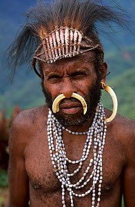 Portrait of Yali hunter in traditional dress, with nose adornment made of wild pig's bones, and rooster feather head-dress. West Papua, former Irian-Jaya, Indonesia, August 2002 - Eric Baccega
