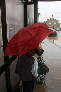 Sheltering in the bus stop during rainstorm. Example of impact of climate change on ordinary people. Denbigh, North Wales, UK. July 2009.  -  David Woodfall