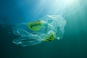 Plastic bag floating in the sea, resembling a jellyfish swimming  Dangerous to sea turtles  -  Sue Daly