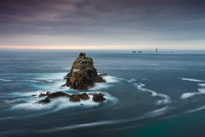 The Armed Knight rock stack and Longships Lighthouse off the coast at Land's End, Cornwall, England. May 2009.  -  Adam Burton