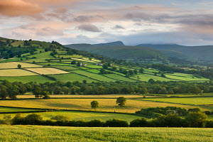 Farmland in the Usk Valley backed by Pen y Fan and Cribyn mountains, Brecon Beacons National Park, Powys, Wales. June 2009 - Adam Burton
