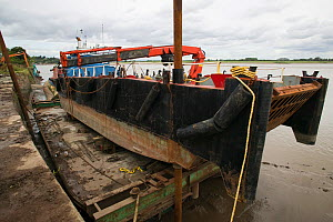 Barge in dry dock at Bulls Pit. Fred Larkham, Gloucestershire boatman. Severn Estuary. England, August 2009 - David Woodfall